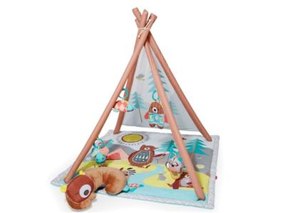 Skip hop Camping Cubs Activity Gym Kopen
